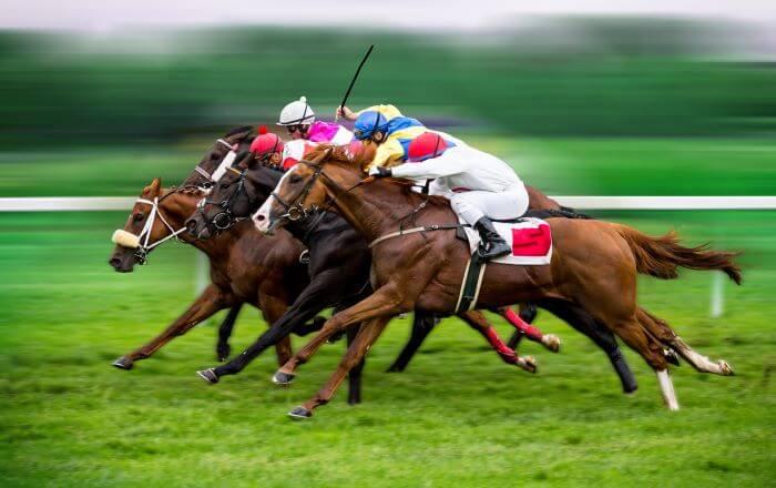 Apostas Dutching em Corridas de Cavalos Online